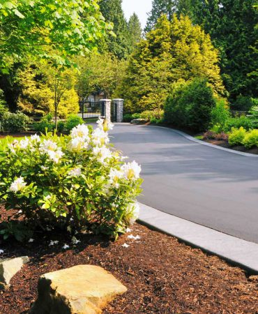 Home View Landscapes - paving